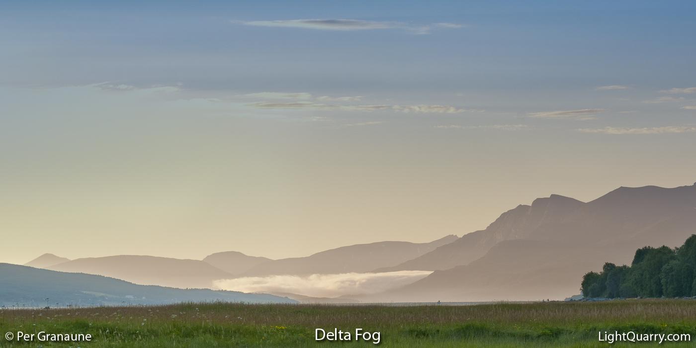 Delta Fog by Per Granaune