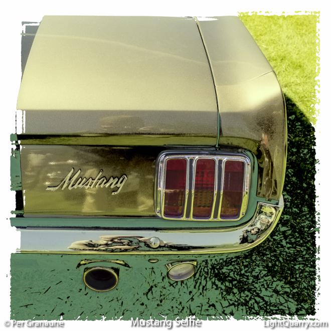Mustang Selfie by Per Granaune