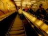 Escalator by Per Granaune