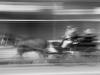 Horsepower by Per Granaune